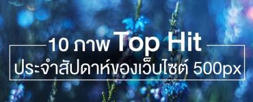 10 ภาพ Top Hit ประจำสัปดาห์ ของเว็บไซต์ 500px