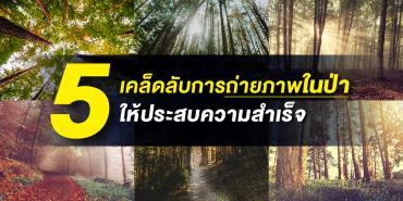 5 เคล็ดลับการถ่ายภาพในป่าให้ประสบความสำเร็จ